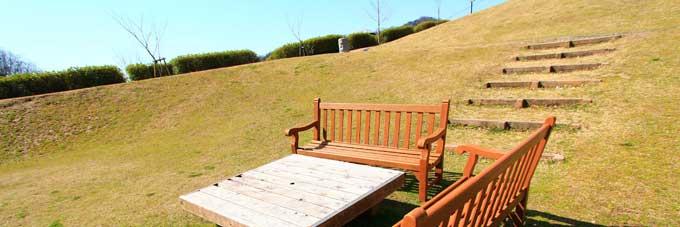 importance-of-sunbathing12